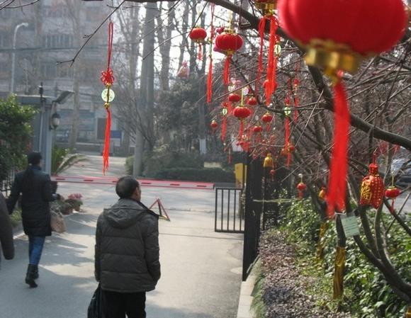 灵蛇喜纳福--美丽的小区景色(四)